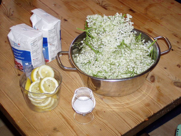 Ingredienser til blomstersaft, saft av hyllebærblomster