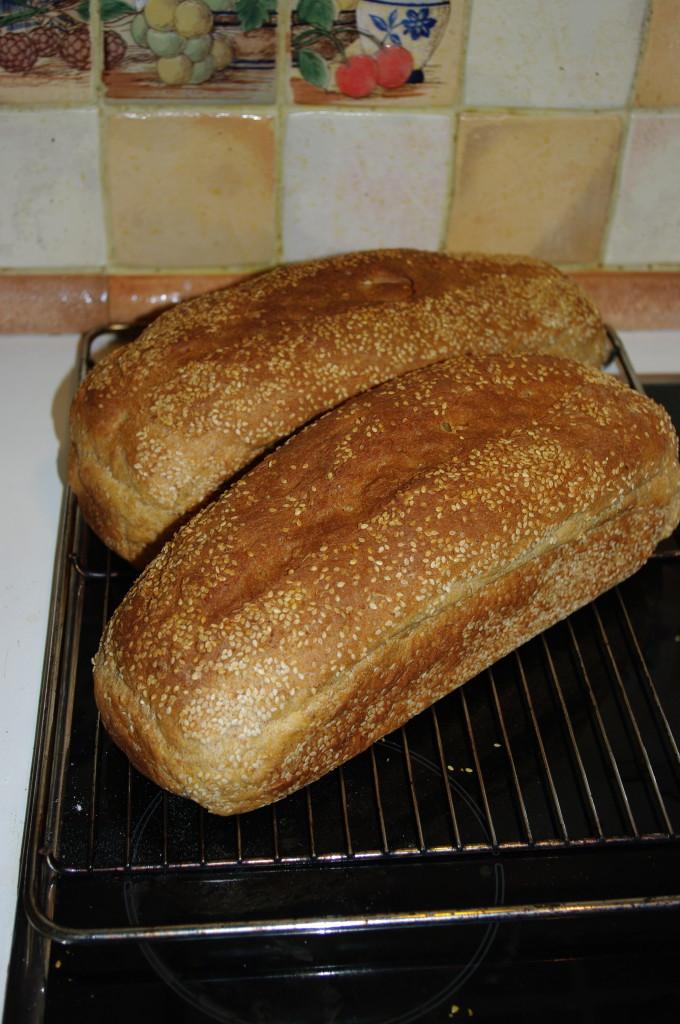 Ferske brød med ristede sesamfrø